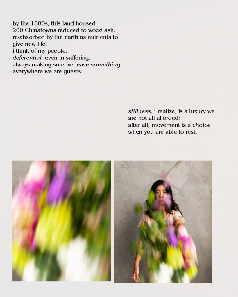 Image Description: Storyboard that includes two images. The first is a blurred close up of a multi-color dress. The second is a young asian woman wearing that blurred dress staring directly into the camera.